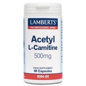acetil l-carnitina