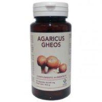 agaricus gheos