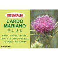 Cardo Mariano Plus Integralia