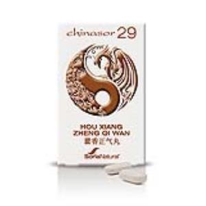 chinasor 29