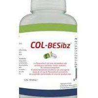 col-besibz