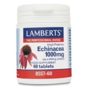 echinacea 1000mg lamberts