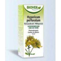 extracto hypericum perforatum
