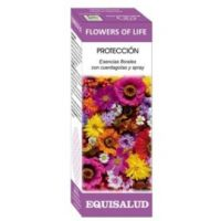flower of life proteccion
