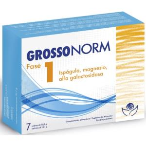 grossonorm fase 1