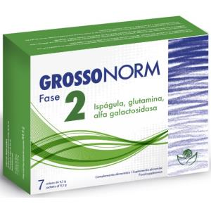 grossonorm fase 2