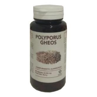 Polyporus Gheos