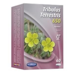 tribulus terrestris 650