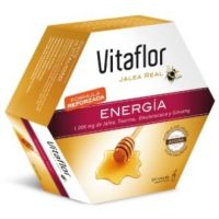 Vitaflor energia plus