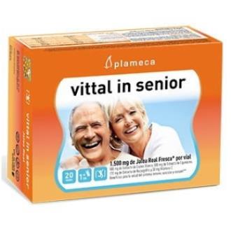 Vittal In Senior